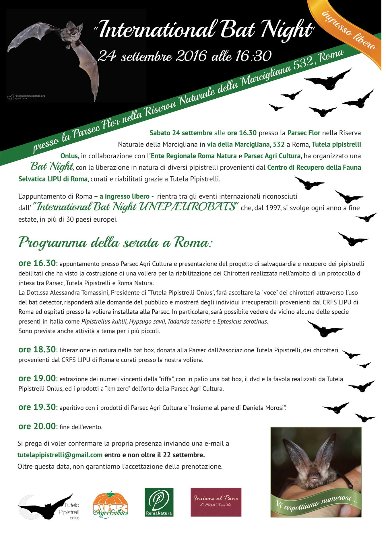 "BAT NIGHT DI ""TUTELA PIPISTRELLI ONLUS"""