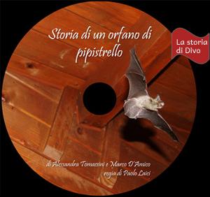 Dvd novità: Storia di un orfano di pipistrello