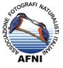 Visita il sito dell'Associazione Fotografi Naturalisti Italiani