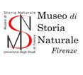 Visita il sito del Museo di Storia Naturale di Firenze